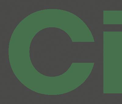 BRICARD CRACKLE FRUITSCHAAL | 40 CM  WIT-GOUD